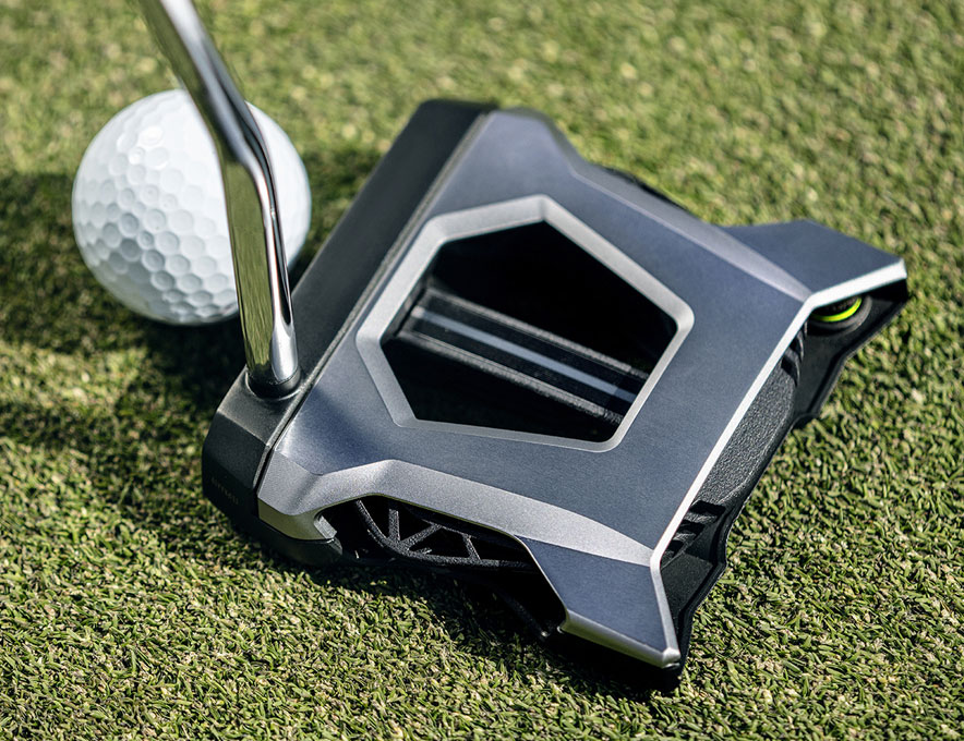 Putter posed in grass